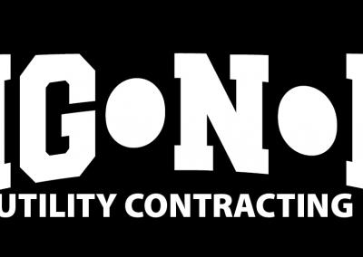 DigNit-02